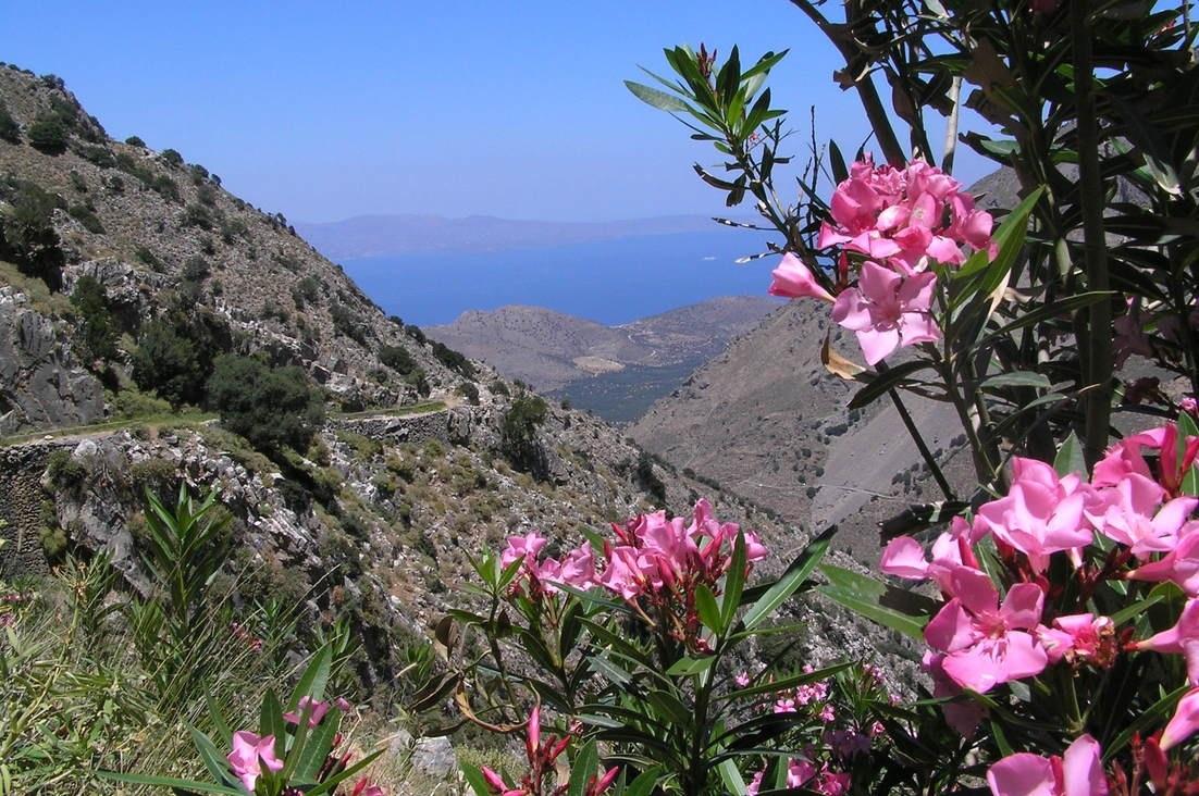 gorge-messonas-sentier-botanique-kavousi-alsace-crete