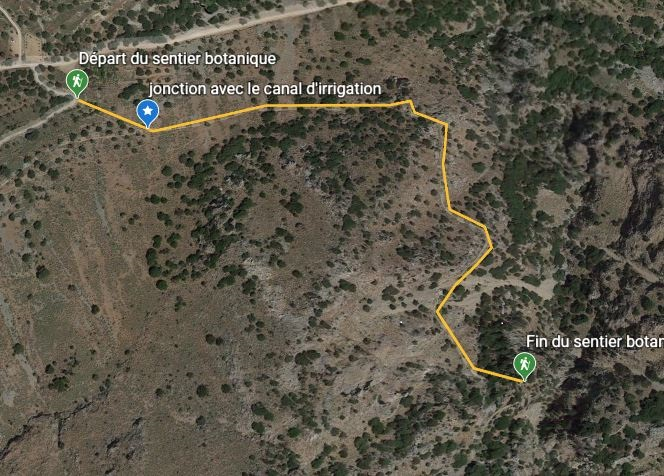 plan-sentier-botanique-kavousi-alsace-crete